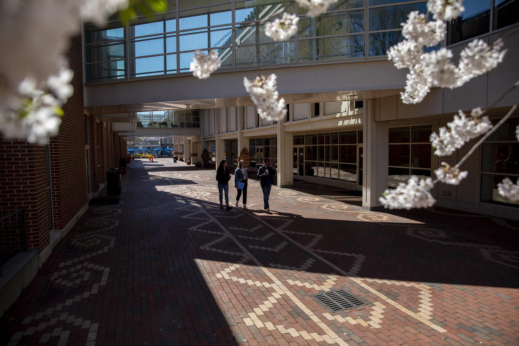 The Gift Plaza